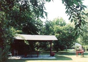Canopy - Shade